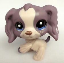 Rare Littlest Pet Shop Purple Cocker Spaniel Dog Puppy Blue Eyes LPS Toy CN