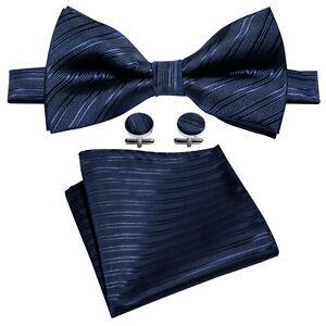 IVAN TROY Blue Stripe Classic Jacquard Woven Men Silk Bow ties Sets