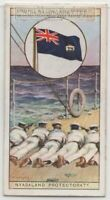 Colonial Flag Nyasaland British Protectorate Malawi Africa 80+ Y/O Ad Trade Card