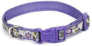 Douglas Paquette MAUVE GARDEN Nylon & Ribbon Adjustable Dog Harness Collar