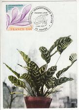 CARTE MAXIMUM FDC 1977 TIMBRE N° 1931 FLORALIES INTERNATIONALES NANTES 1977