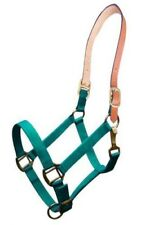 Showman TEAL Triple Ply Nylon Western Horse Halter w/ Leather Crown!! NEW TACK!!