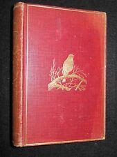 British Birds by W H Hudson - 1902 - Archibald Thorburn Illustrated, Ornithology