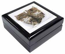 Kittens in White Fur Hat Keepsake/Jewellery Box Christmas Gift, AC-189JB
