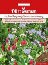 Gründüngung Bunte Mischung (500 g für 100 m2) Saatgut von Dürr-Samen