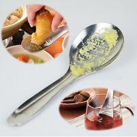 Stainless Steel Lemon Zester Grinding Garlic Tool Ginger Spoon Grater