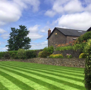 LAWN GRASS SEED 2KG FINE RYE FREE FRONT ( 40 SQ/M ) From Maltbys Stores 1904 Ltd