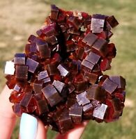 ~ ~ LQQK ! Large Dark Cherry Red Vanadinite Crystals On Matrix From Morocco ~ ~