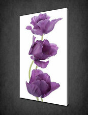 ELEGANT PURPLE TULIPS FLOWERS CANVAS PRINT POSTER PICTURE READY TO HANG