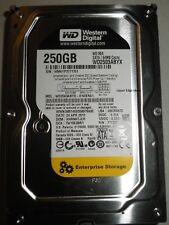 Western Digital 250gb Hard Drive 3.5 WD2503ABYX-01WERA1