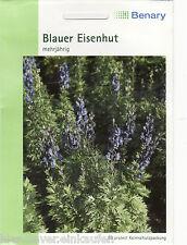 Blauer Eisenhut Aconitum napellus mehrjährig 50 Pflanzen  Benary Samen
