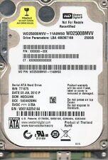 Western Digital WD2500BMVV-11A9MS0 dcm: HECVJHN s/n; WX61..250GB USB 2.0 4818