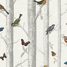 EPPING BIRDS ON BRANCHES WALLPAPER - WHITE - HOLDEN 12231 BUTTERFLY