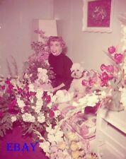 Joan Crawford w/dog 1953 Vintage 4  X  5  TRANSPARENCY