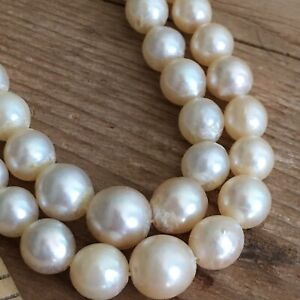 An antique genuine natural pearl necklace Sterling Clasp - Stamped Foreign
