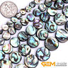 Natural Abalone Shell Gemstone Coin Flatback Loose Beads For Jewelry Making 15""