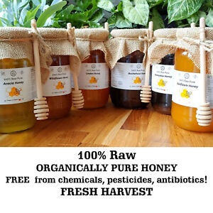 1kg RAW ORGANICALLY PURE HONEY 100% free from chemicals, pesticides 2021 HARVEST