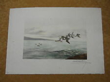 Pencil Signed Leon Danchin Etching of Teal Ducks Flying