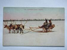 LAPLAND reindeer outfit LAPPONIA Finland old postcard vecchia cartolina