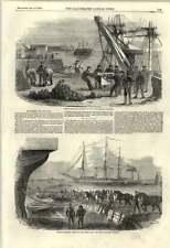 1855 Shipping Artillery Horses Crimea Woolwich Dockyard Landing Shell Case Shot
