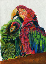 10x8 print Parrots Macaw oil pastel birds painting animal art Andy Currie-Scarr