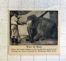 1953 Rusty The Elephant Enjoying A Shower Provided By Head Keeper Buck Jones