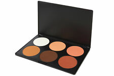 Blush Palette for Makeup
