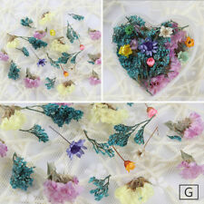 Nail Art Mixed Dried Flowers DIY Bottle Preserved Flower  Decoration #4
