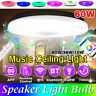 36W Music Ceiling Lamp RGB LED Night Light Speaker bluetooth Remote Control USA