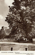 OLD POSTCARD - HAMPSHIRE - Winchester Cathedral - The Avenue - AW KERR