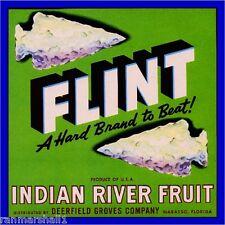 Wabasso Florida Flint Arrowhead Orange Citrus Fruit Crate Label Art Print