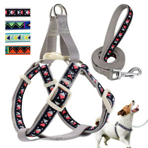 Adjustable Step In Dog Harness and Leash Set for Small Medium Dogs Walking Vest