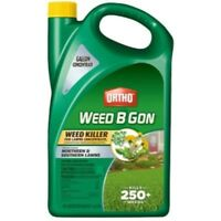 Ortho Weed-B-Gon Weed Killer For Lawns - 1 Each