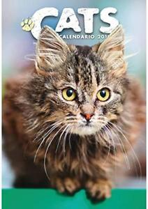 Chats Cats Calendrier De Mur 2019 CAL19-GATT Byblos
