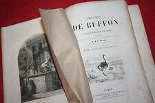 OEUVRES DE BUFFON OISEAUX INSECTES REPTILES POISSONS par M. MORIN éd J.VERMONT