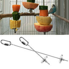 Durable Small Bird Parrot Animal Stainless Steel Skewer Stick Fruit Spear Holder