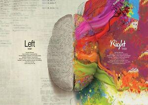 Left Brain Right Brain School College POSTER ART PRINT A4 / A3 BUY 2 GET 1 FREE