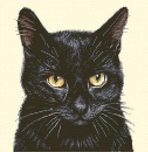 BLACK  CAT, KITTEN  ~ Complete counted cross stitch kit *Jann Designs
