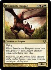 MTG magic cards 1x x1 Light Play, English Broodmate Dragon Shards of Alara