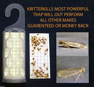 5 x KRITTERKILL DIAMOND CLOTHES MOTH TRAPS - PHEROMONE - 550,000 PADS SOLD