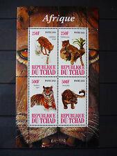 Leoparden 02 1 léopards Katzen cats Tiger Tiere animals Fauna postfrisch ** MNH