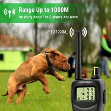 Petrainer 900B-2 1000Meter Rechargeable Waterproof Dog Training Shock Collar