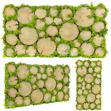 NEU Bilder Moosbild echtes Moos Pflanzenbild Dekoration Geschenkidee 40x78 cm