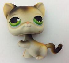 Littlest Pet Shop Orange White Black Calico Cat Blue Eyes #106 Preowned Lps