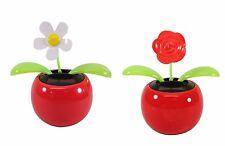 Dancing flower~ 1 Daisy 1 Rose Solar Toy US Seller Car Home Decor Christmas Gift