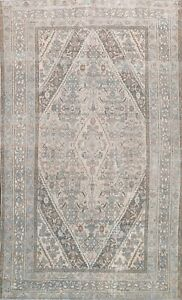 Muted Semi Antique Distressed Traditional Area Rug Handmade Wool 7x10 Carpet