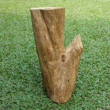 600 Gram Natural Aquilaria Filaria Agarwood Papua Wild Harvest Aloeswood