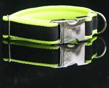 Halsband mit SCHNALLE 25mm Smaragd grün Biothane Hundehalsband