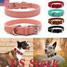 Adjustable Small Pet Dog Cat Collar Puppy Multi-color PU Leather Collars Decors