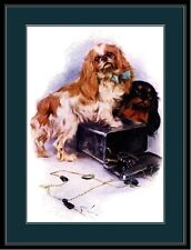 English Print Cavalier King Charles Spaniel Dog Dogs Puppy Poster Picture